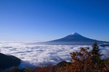 日本の美.jpg